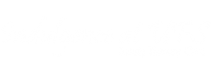 indulgence-beauty-logo